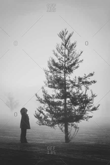 Child looking at tree on foggy day