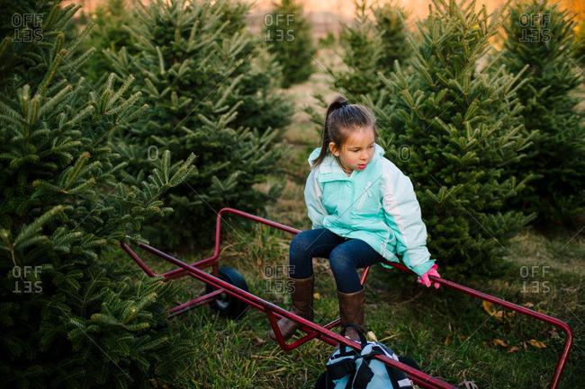 Girl sitting on a cart on a Christmas tree farm