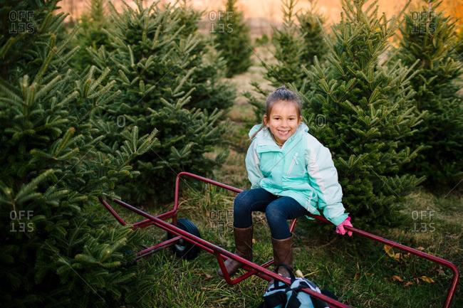 Happy girl sitting on a cart on a Christmas tree farm