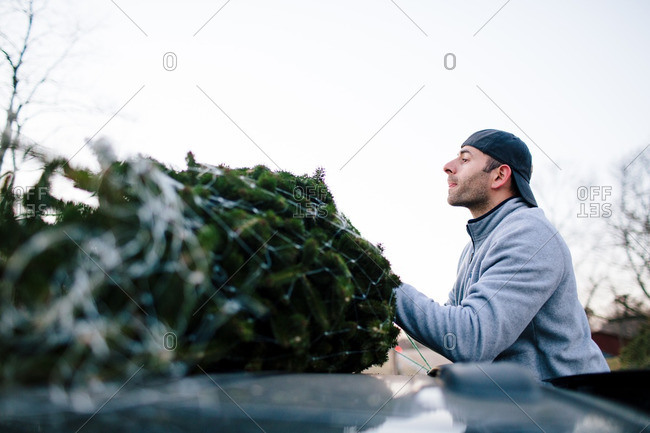 Man tying Christmas tree to roof of vehicle