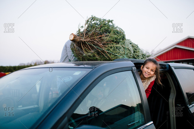 Happy girl leaning out door of a van with a Christmas tree on top