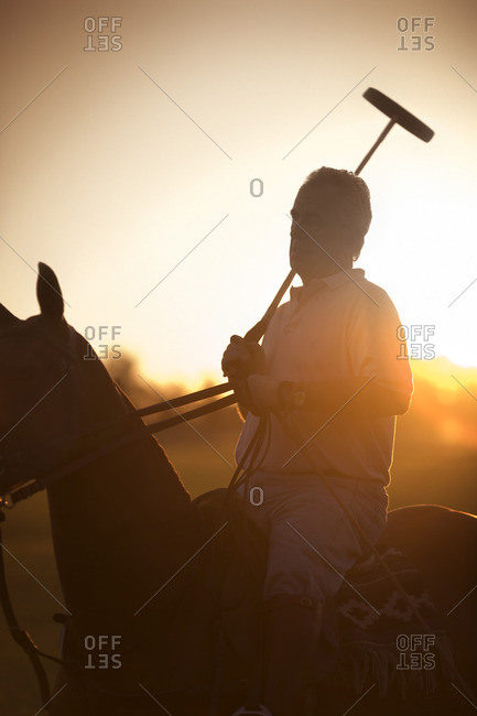 Polo player on his horse at sunset.