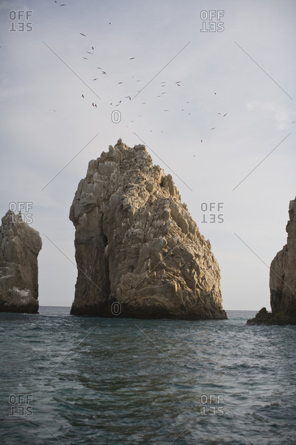Flock of birds above a rock formation in the ocean.