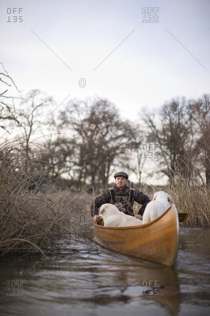 Man duck hunting by canoe with his dogs.