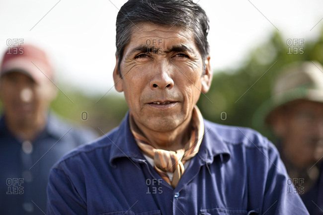 Senior man working on an orchard.