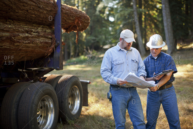 Two forestry workers consulting plans.
