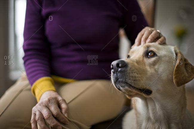 Woman petting her dog.