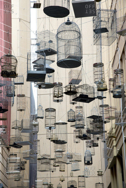 Empty bird cages hanging amongst buildings in Sydney, Australia
