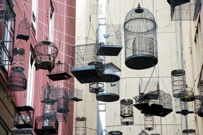 Sydney, Australia's Canopy of Bird Cages