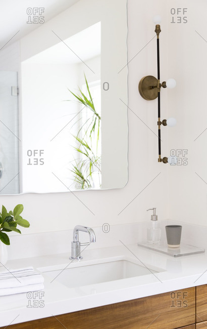 Bathroom with natural wood and plants