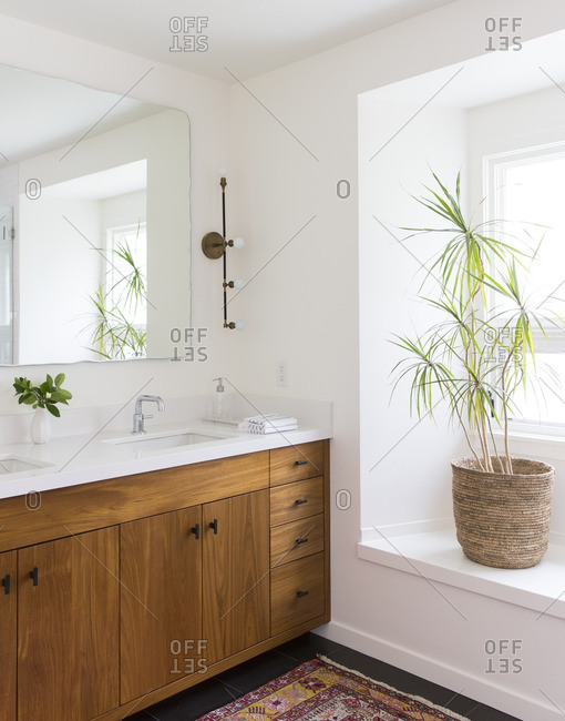 Bathroom design with natural wood and plants