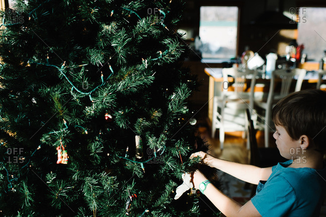 Boy stringing lights on Christmas tree