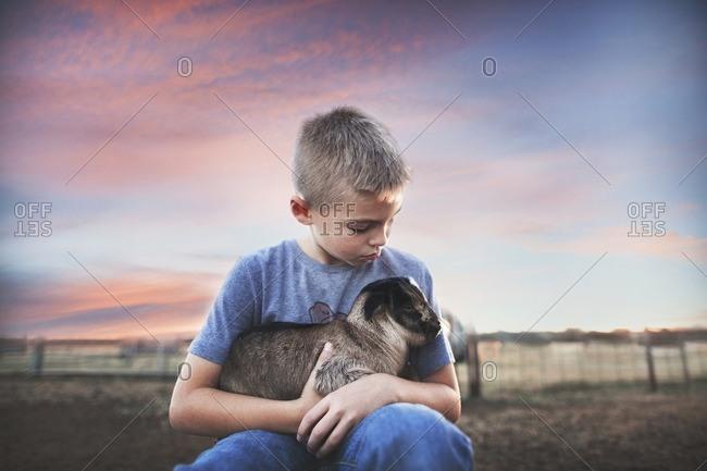 Boy holding goat in rural sunset