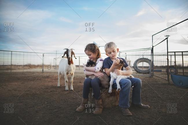Kids sitting holding goats
