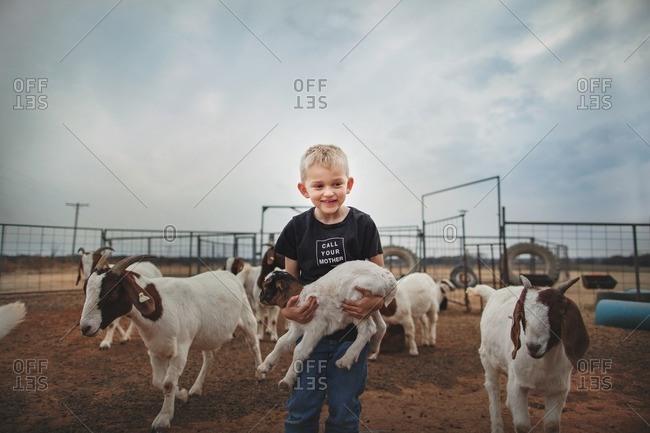 Boy holding baby goat in pen