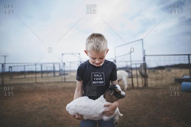 Boy holding onto a baby goat