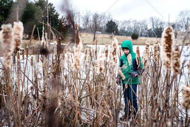 Boy on frozen pond behind plants