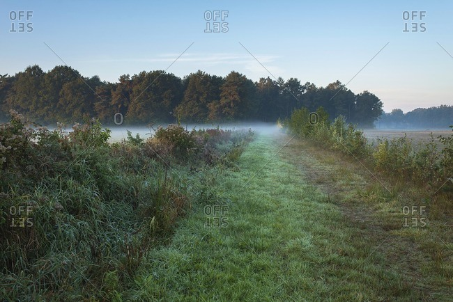 Dutch rural landscape with layer of mist. Noordijkerveld. Achterhoek. Gelderland. The Netherlands.