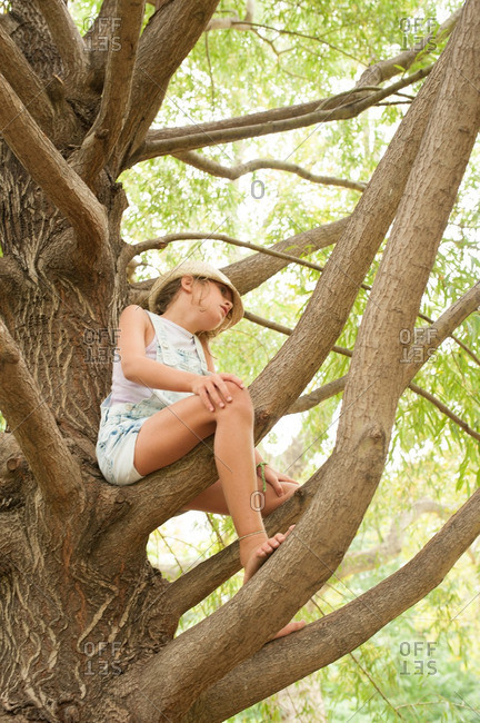 Girl sitting in a tree