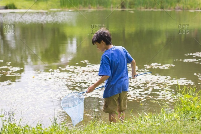 Boy fishing with a net in a lake