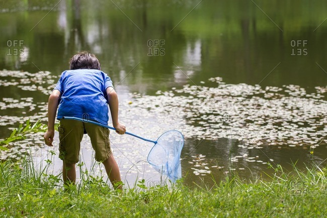 Boy using a net to fish in a lake