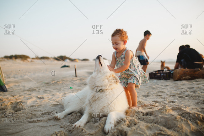 A girl playing with a dog at the beach