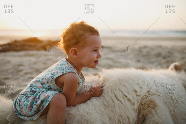 A girl sitting on a fluffy dog at the beach