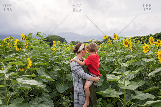 Woman holding her son and looking at sunflowers