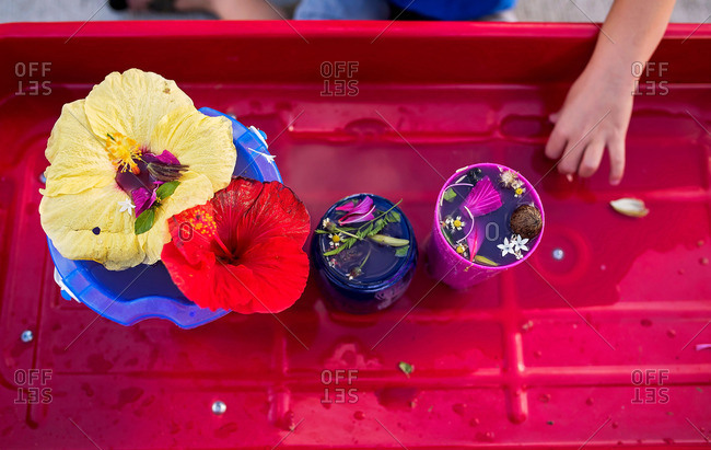 Child's hand on a wagon with flowers in water