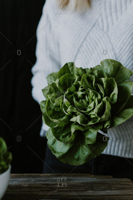 Woman holding bunch of lettuce