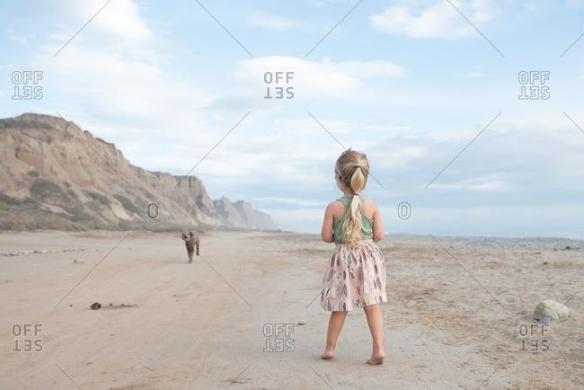 Little girl standing on a beach watching a dog