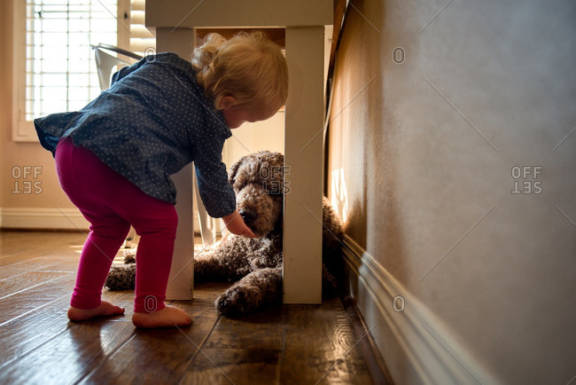 Toddler girl petting a dog lying under a table