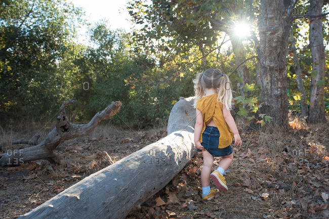 Little girl walking in a forest next to a fallen log