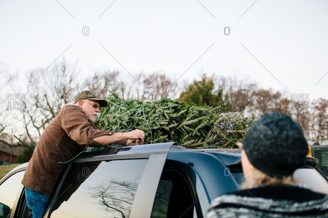 Woman watches as man ties Christmas tree to roof of car