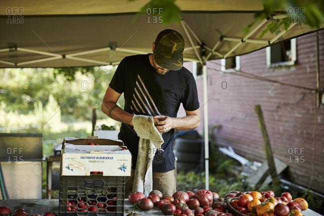 A Farmer Cleans Off An Organic Tomato