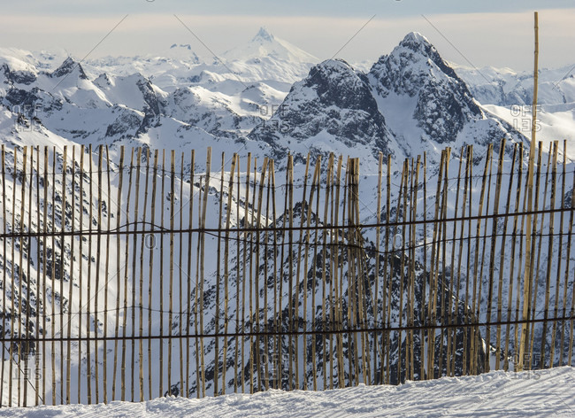 Landscape Of The Andes Mountains With A Bamboo Fence In The Foreground