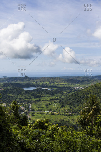 High Angle View Of Greenery Landscape With Bay Of Water In Puerto Rico