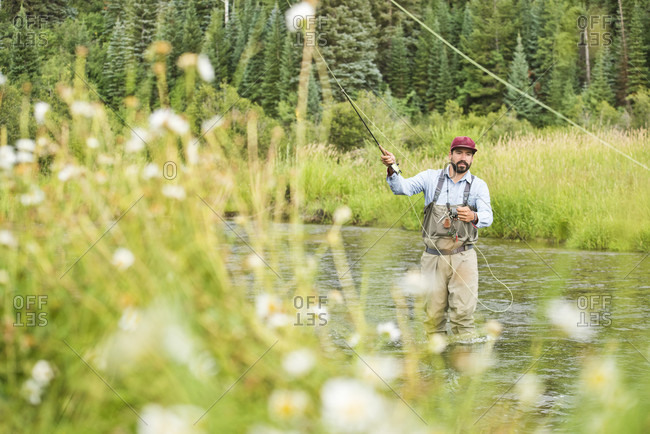 A Fly Fisherman Fly Fishing On The Yampa River, Colorado