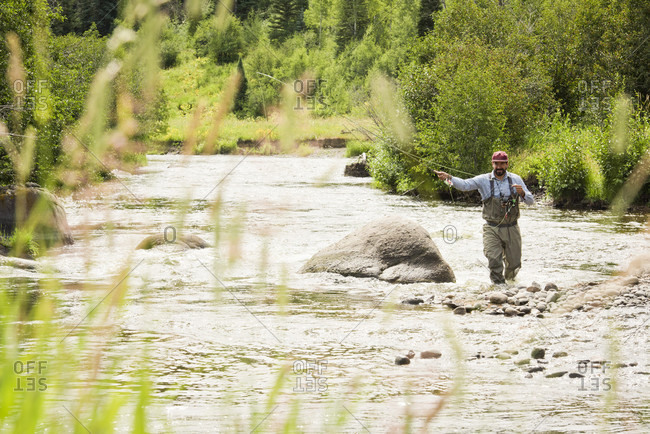 A Fly Fisherman On The Yampa River In Steamboat Springs, Colorado