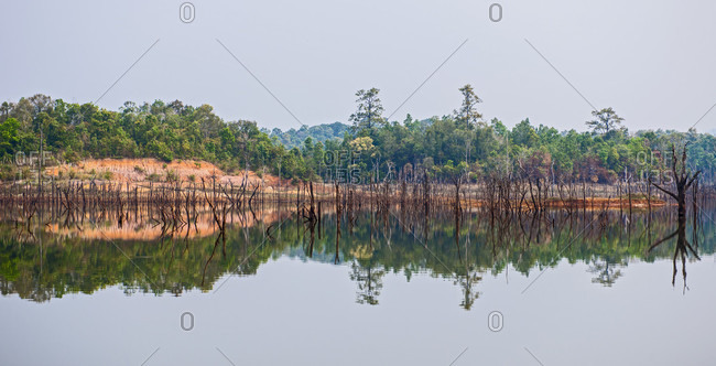 Reflection Of Trees In Lake At Laos