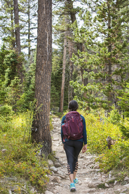 A Female Hiker Hiking On A Trail In Rocky Mountain National Park, Colorado, Usa