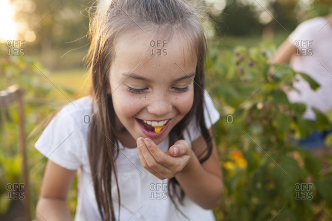 A Young Girl Spits Out A Tomato While Gardening In Fort Langley