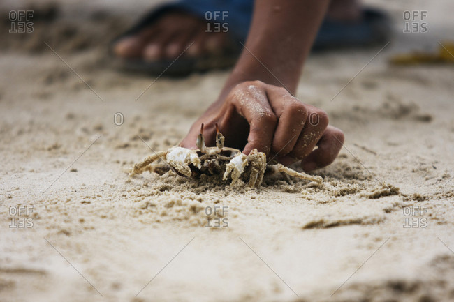 Asian Boy Is Holding A Crab In Philippines, Palawan El Nido