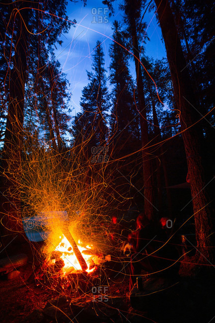 Illuminated Sparks Fly From A Roaring Campfire In Forest