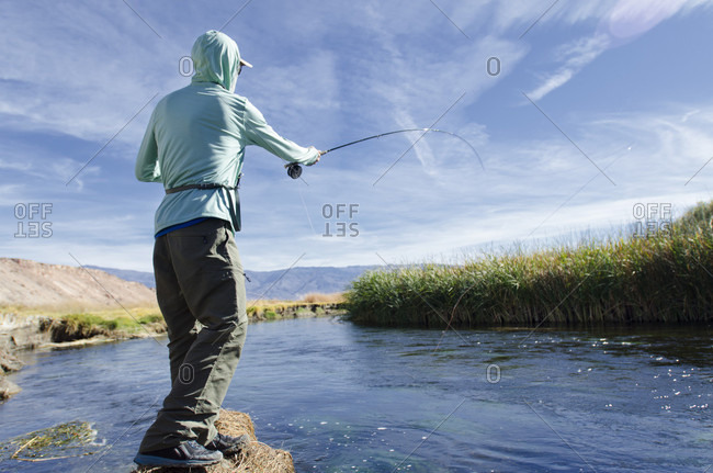 Fisherman Fly Fishing On The Owens River, Bishop, California, Usa