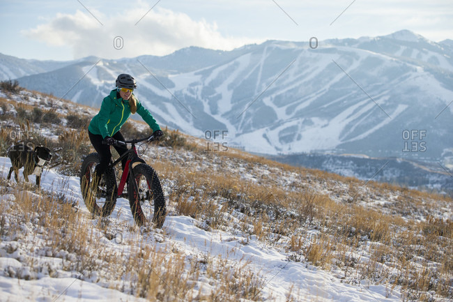A Woman Fat Biking On The Trails With Her Dog Above Park City, Utah
