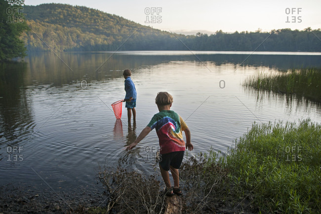 Brothers Looking For Salamanders At The Edge Of Russell Pond Of New Hampshire