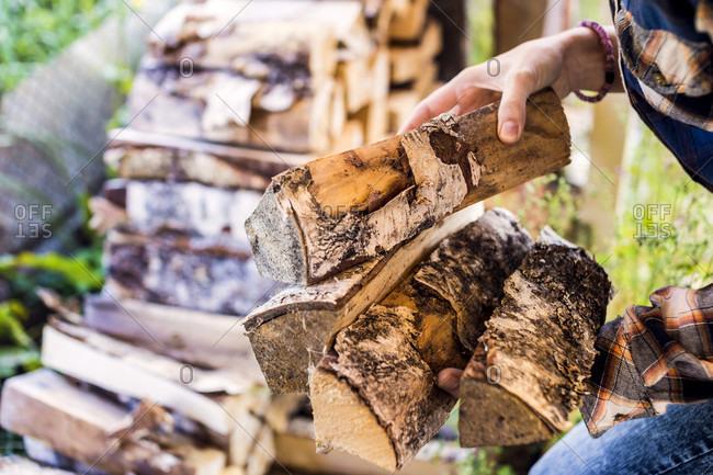 Woman Hand Holding Firewood