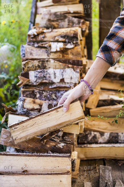 Close-up Of Woman Hand Holding Firewood