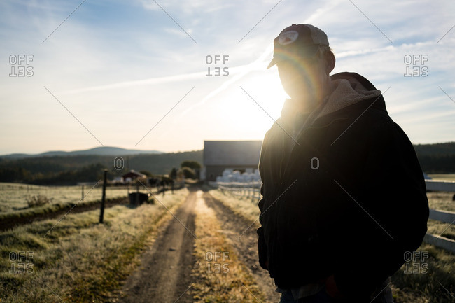 October 4, 2015 - Northeast Kingdom, Vermont: Silhouetted organic farmer standing in farm field at dusk